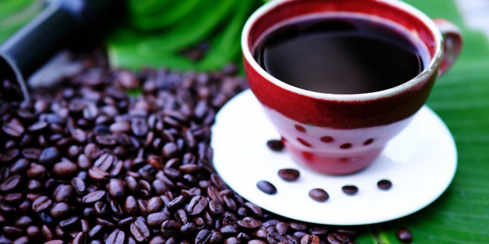 Best Bean to Cup Coffee Machines Under £300
